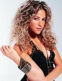 Shakira at MTV Music Awards 2006 Foto 293 (Шакира на MTV Music Awards 2006 Фото 293)